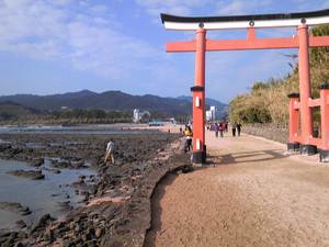 Aoshima2